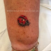 micro ladybird tattoo huddersfield helen aldous